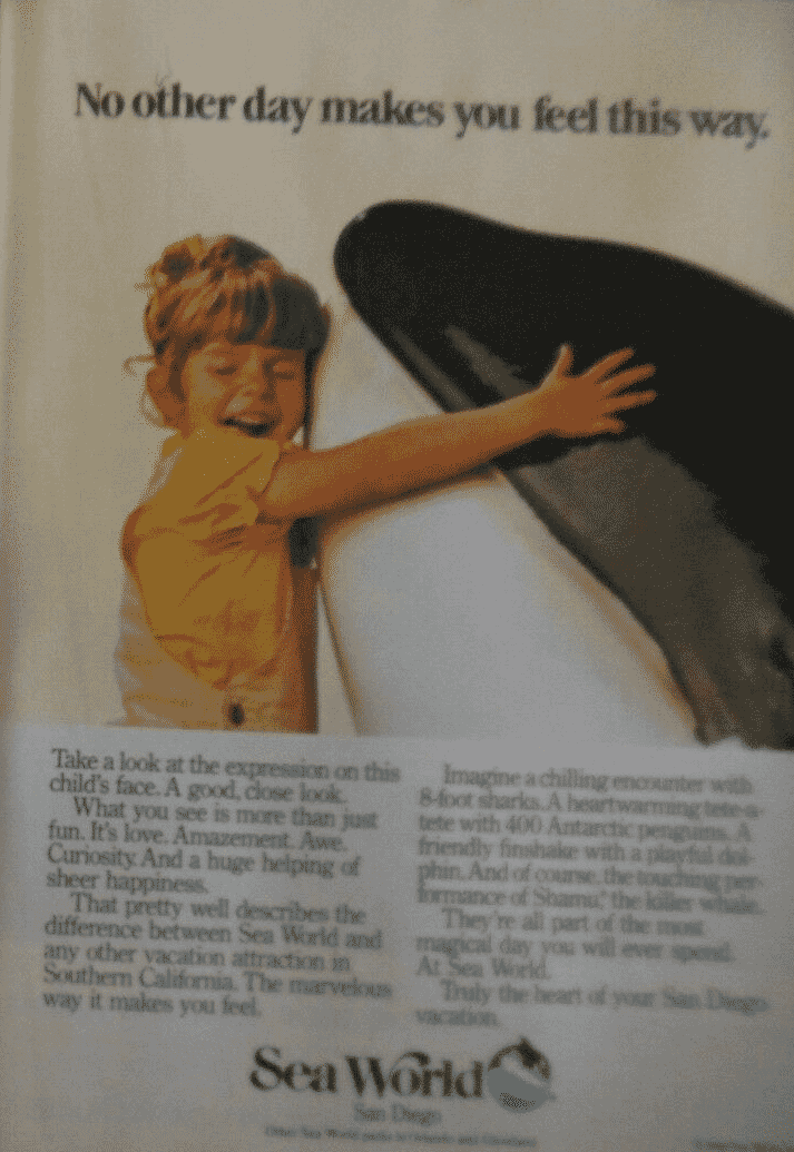 Sea World Ad